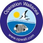 Operation Walllacea